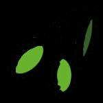100% huile d'olive française et bio